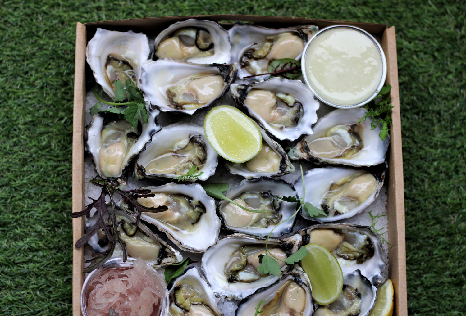 Grazing Boxes Sydney - Box of Sydney Rock Oysters